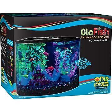GloFish Crescent
