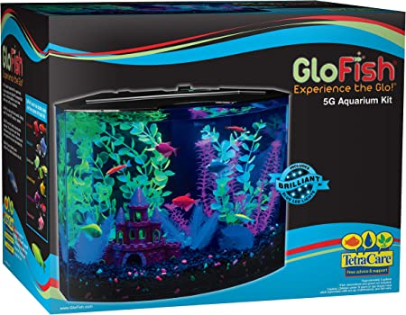 Glofish 5-Gallon Aquarium Kit
