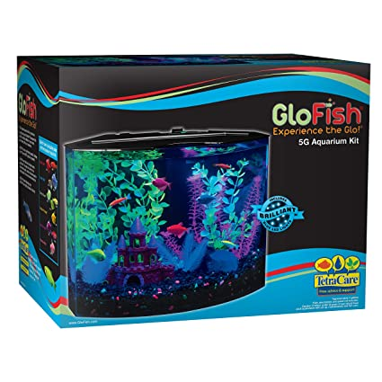 GloFish 29045 Kit Acuario con luz LED azul, 5-Gallon