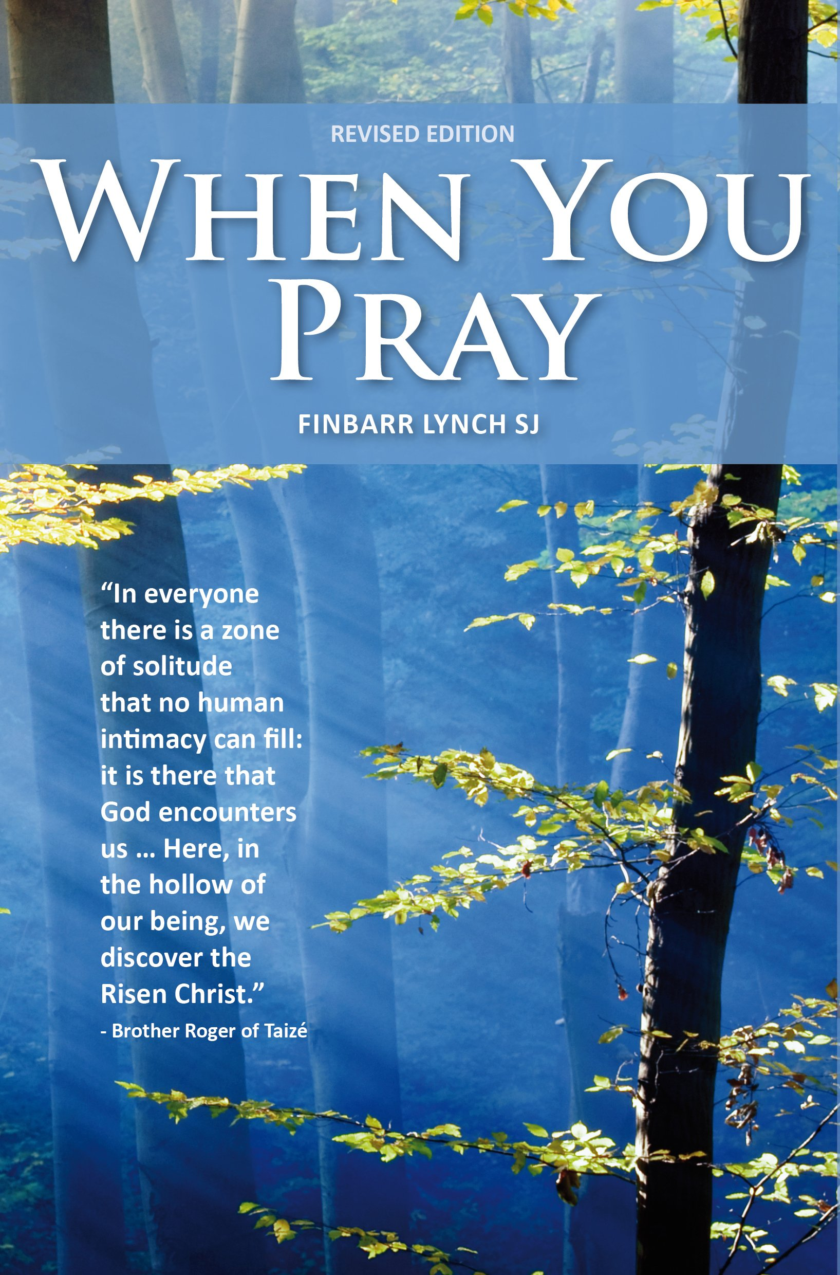 When You Pray: Finbarr Lynch: 9781910248515: Amazon com: Books