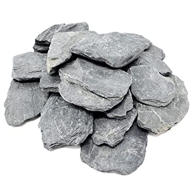 Capcouriers Slate Stones (Slate Stones 2.5 LBS) - Flat Rocks - Natural Slate Rocks - 2 to 3 inches (Stones are Dusty): Home & Kitchen