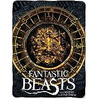 Warner Bros Fantastic Beasts, Smoke Micro Raschel, Throw Blanket