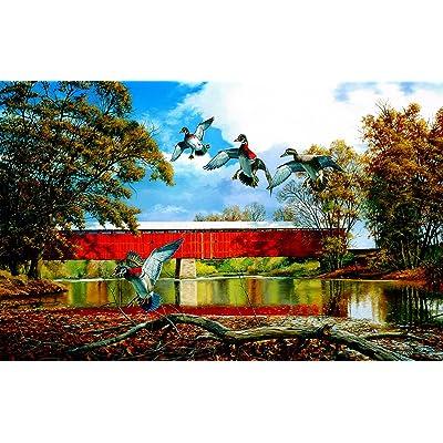 Eldin Bridge 550 Piece Jigsaw Puzzle by SunsOut: Toys & Games