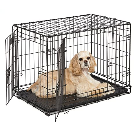 Amazon Dog Crate Midwest Icrate 30 Double Door Folding