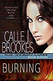 Burning (PAVAD: FBI Romantic Suspense Book 11)