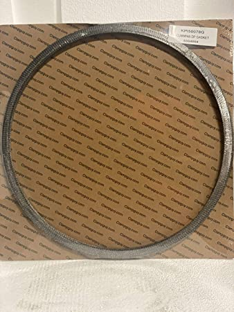 "2 PCS PACK PRICE CUMMINS DPF GASKET 2871772//5417860 11.81/""x12.46/"""