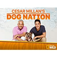 Cesar Milan's Dog Nation Season 1