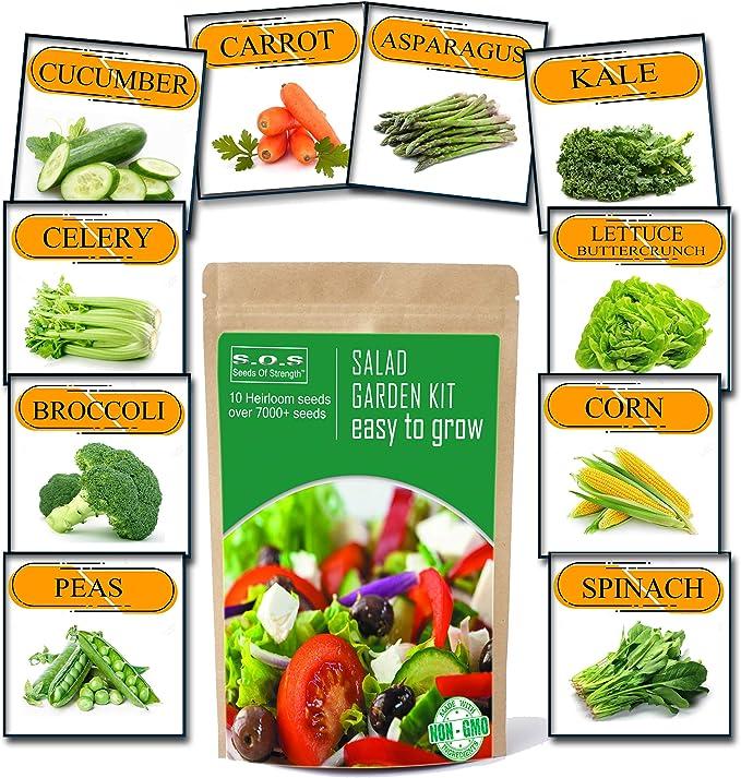 ONION Gladalan White 100 Seeds Organic Vegetable Salad Hardy Super Food Heirloom