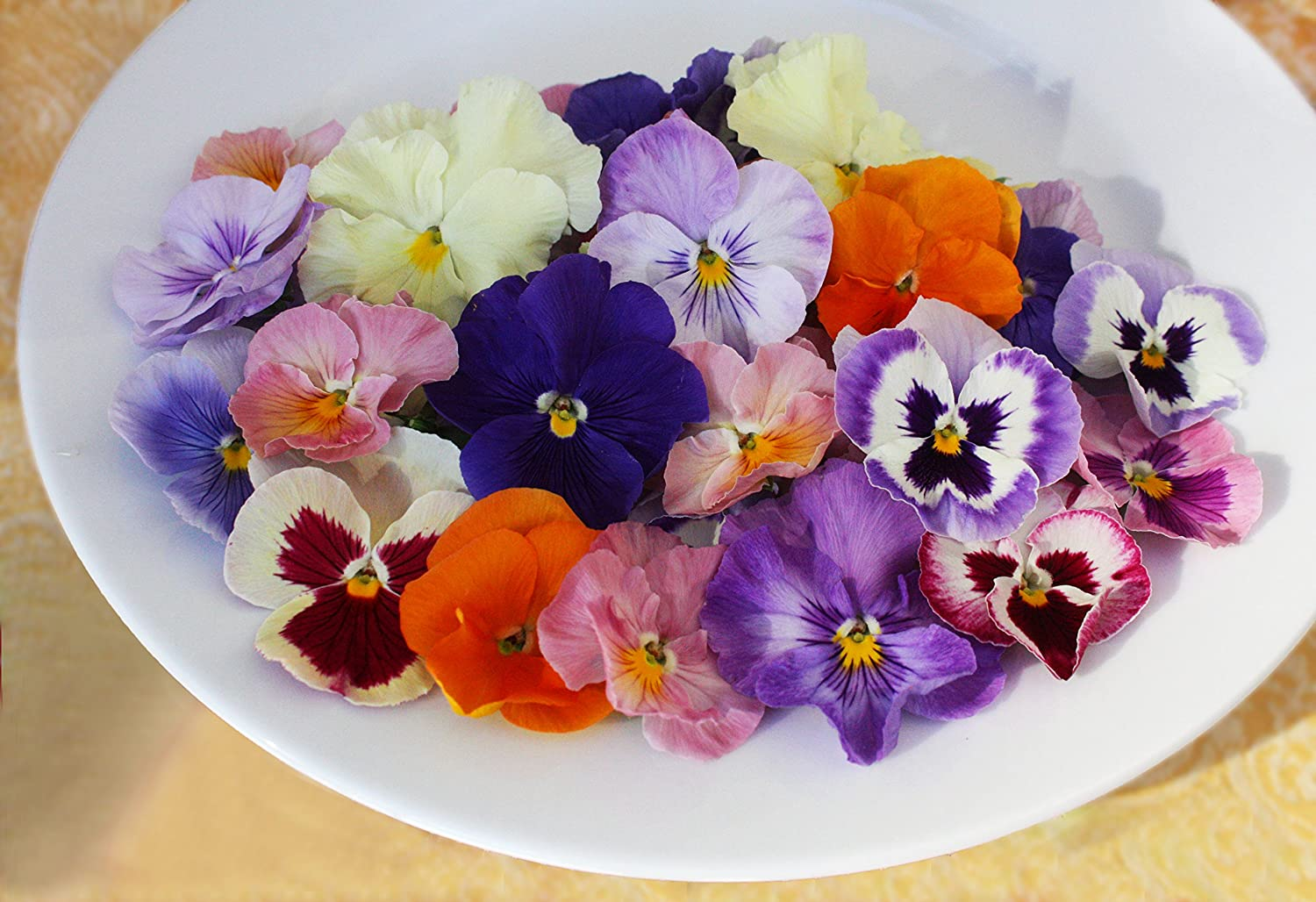 Edible Flowers Pansy 50 Count Amazon Grocery Gourmet Food