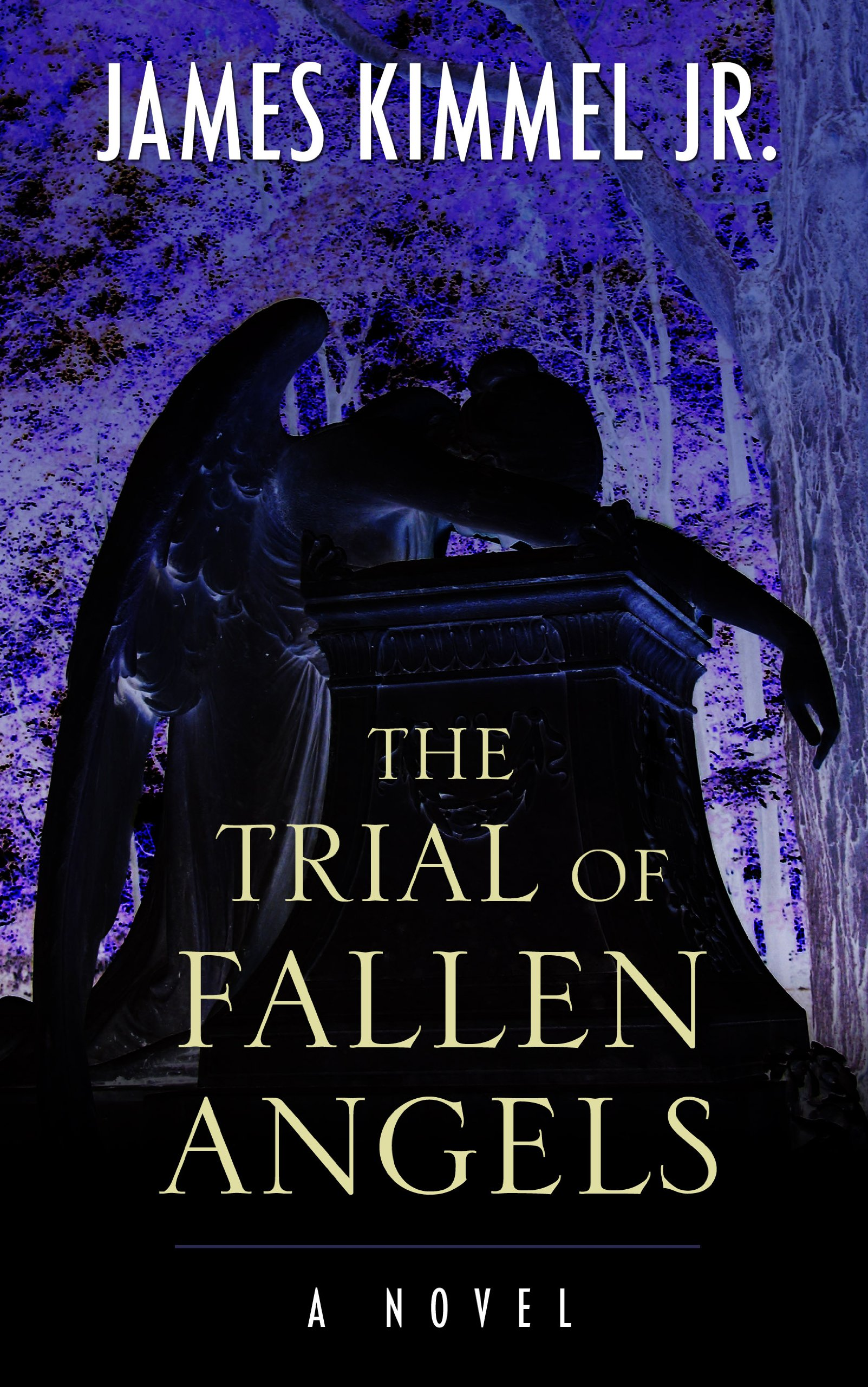 The Trial of Fallen Angels: Amazon ca: James Kimmel, Jr