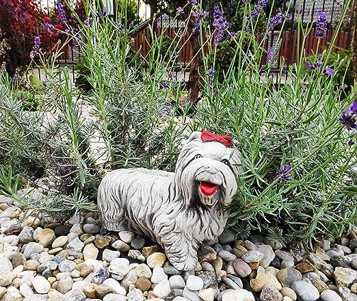 """Green Lane Garden Figura de Perro de Adorno de jardín de Cemento - Alegre York The Corkie"""" (Blanco): Amazon.es: Jardín"""