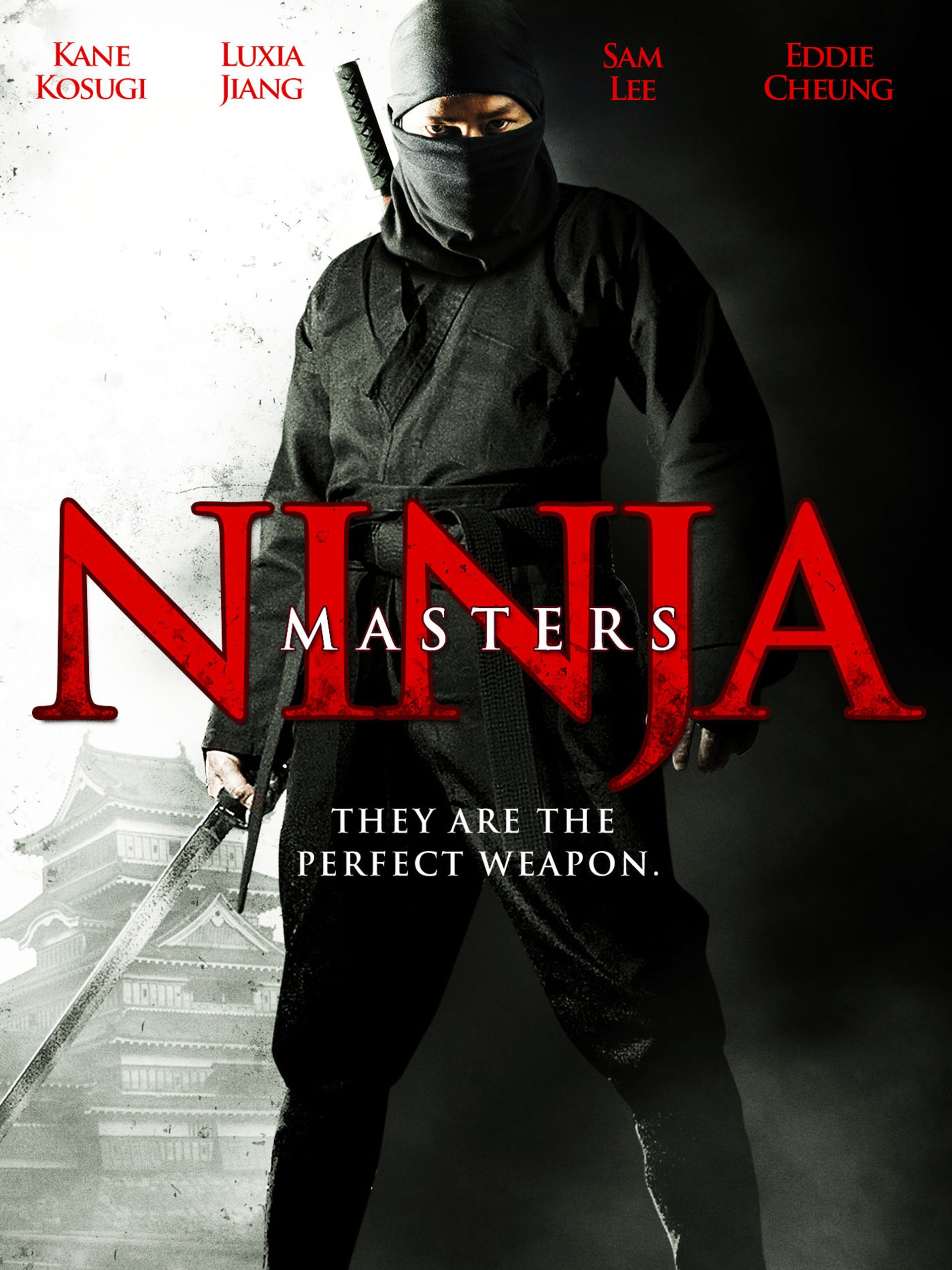 Amazon.com: Ninja Masters: Kane Kosugi, Courtney Wu, Siu-Fai ...