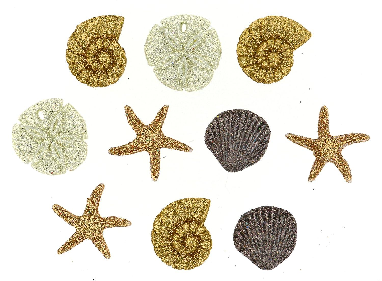 Jesse James Dress It Up Buttons Beach Collection #0452 Seashells 0452-2P by Jesse James   B00XWS12LI