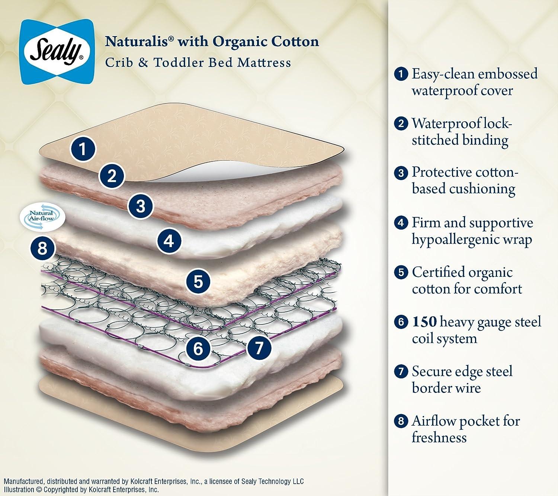 Sealy Soybean Foamcore Crib Mattress Walmart All