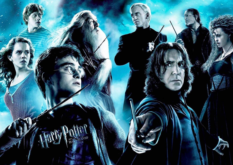 Lot de 4 sets de table plastifi/és Harry Potter