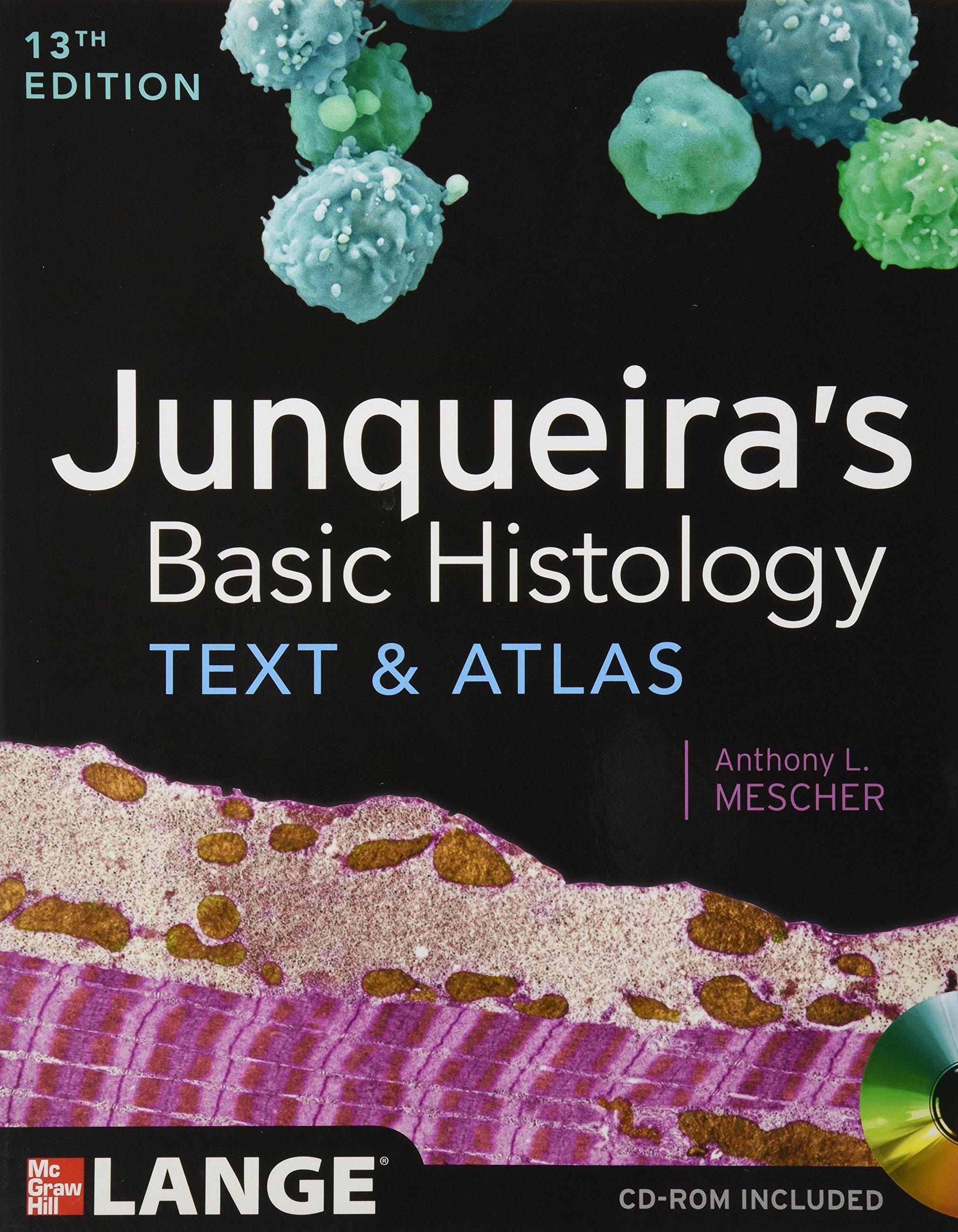 Junqueira\'s Basic Histology: Text and Atlas, Thirteenth Edition ...