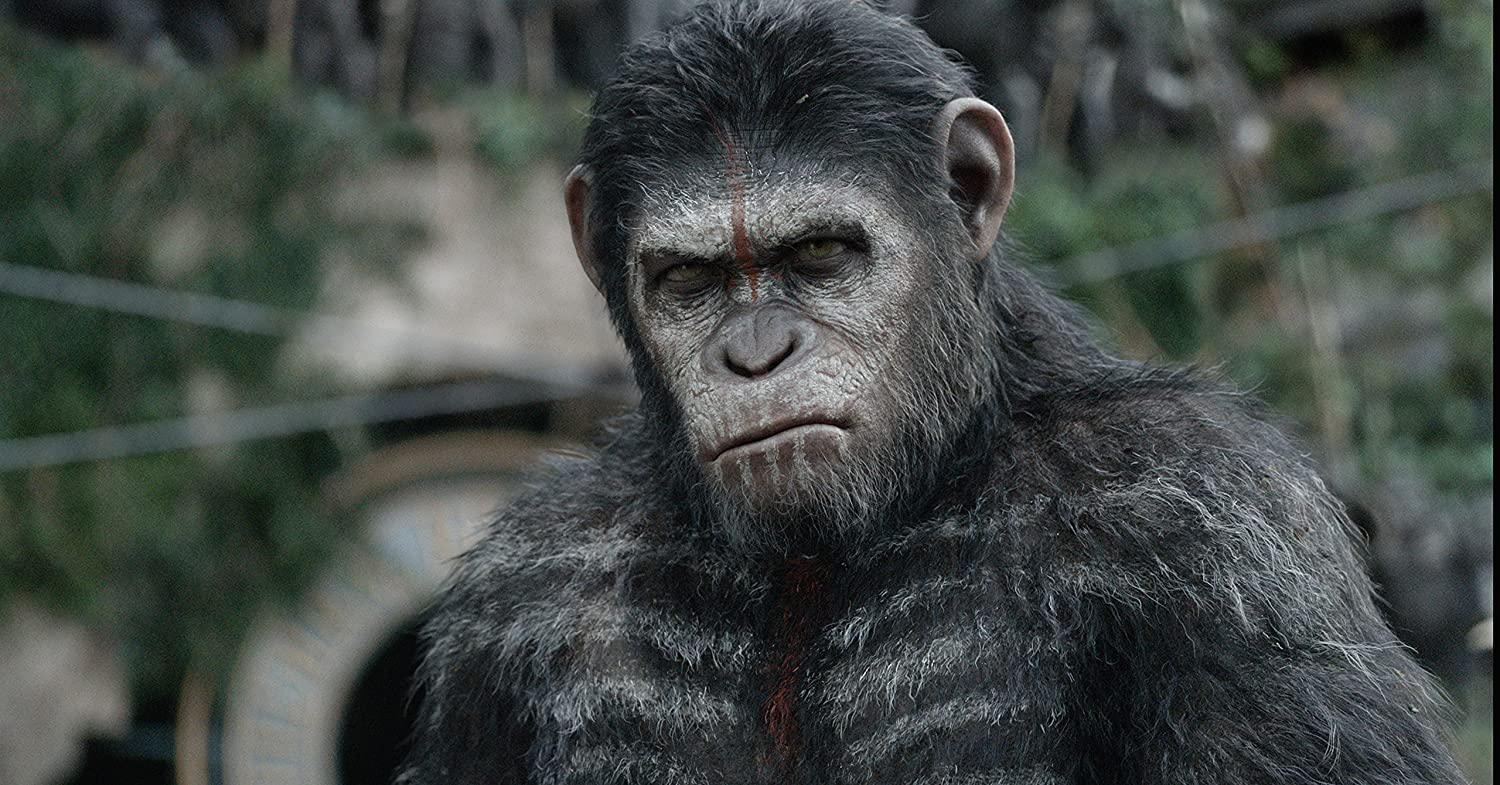 Posterhouzz Movie Dawn Of The Planet Of The Apes Hd Wallpaper