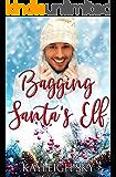 Bagging Santa's Elf