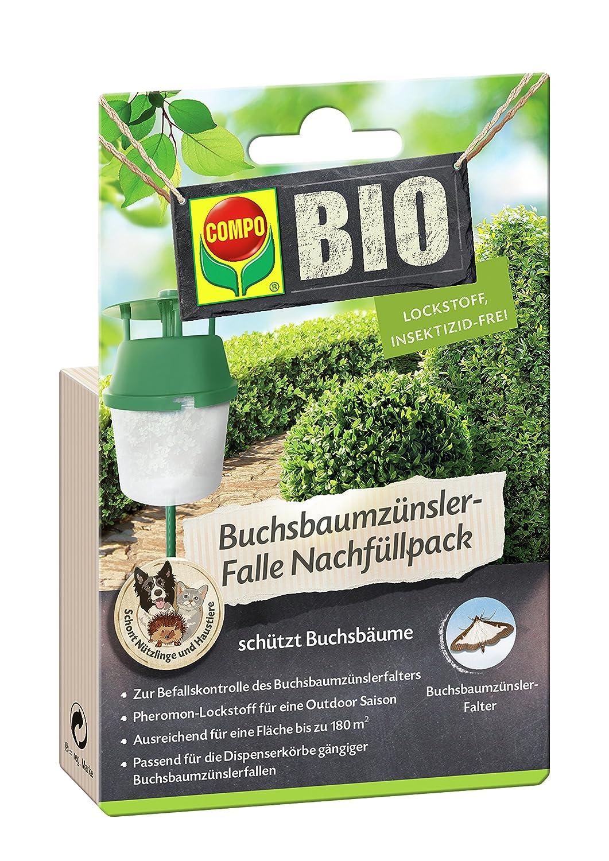 COMPO Buchsbaumzü nsler-Falle Nachfü llpack, 3 Stü ck, Insektizid-frei 2207802004