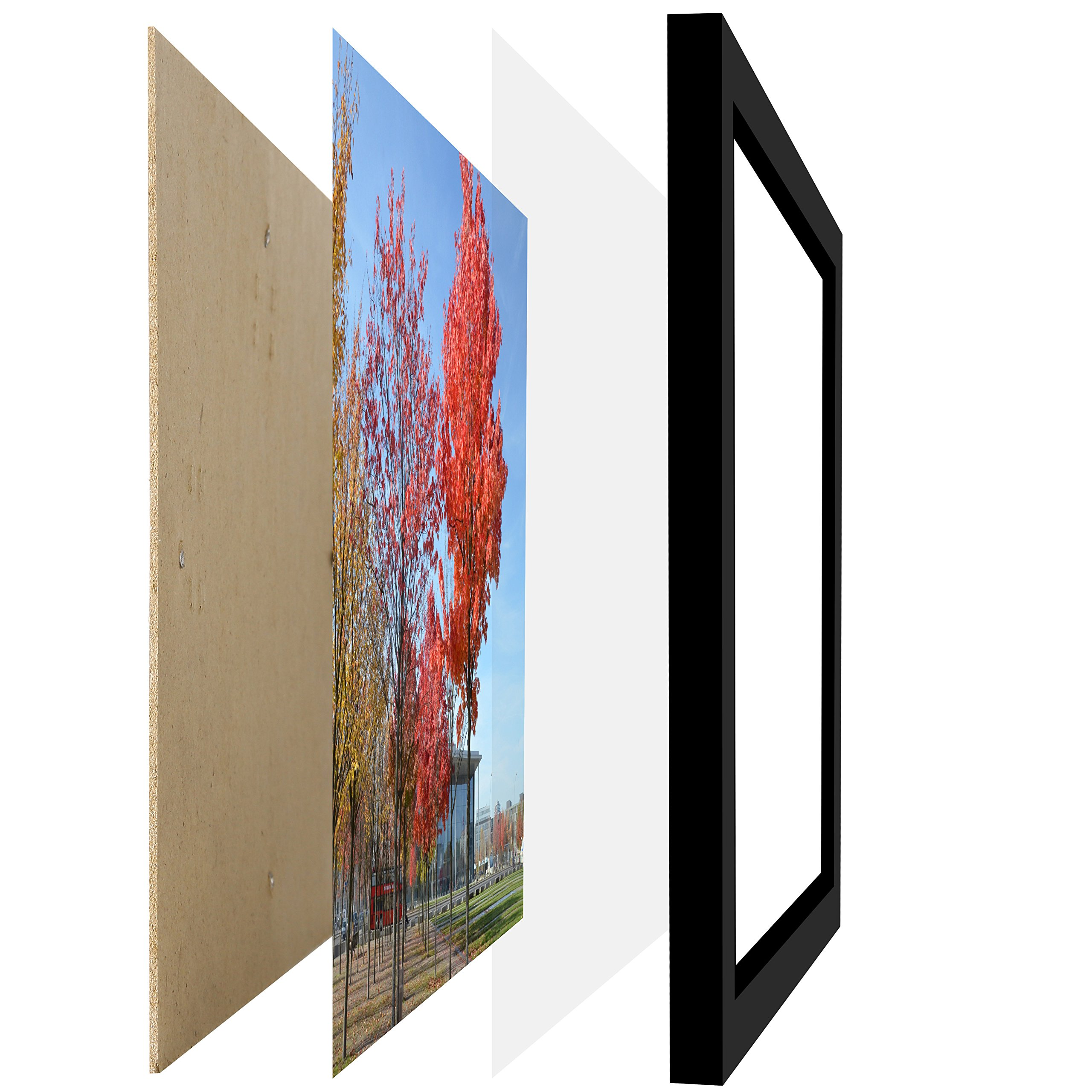 Medog 11 by 17 Inch Picture Frame Without Mat to Display Picture 11x17 Wall Mounting Document Certificate Frames If Add Mat Can As 11x14 10x14 9x11 10x12 8x10 7x11 7x9 6x8 Picture Frame P1H by Medog