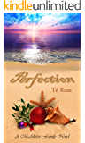 Perfection (The McAllister Family Series Book 3)