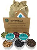 Gin Botanicals & Spices Gift Set– Garnish your Gin and Tonic with 6 different Botanicals | Infuse Gin and Tonic Cocktails | Includes Coriander, Juniper Berries, Allspice, Rose Petals, Cassia & Cardamom