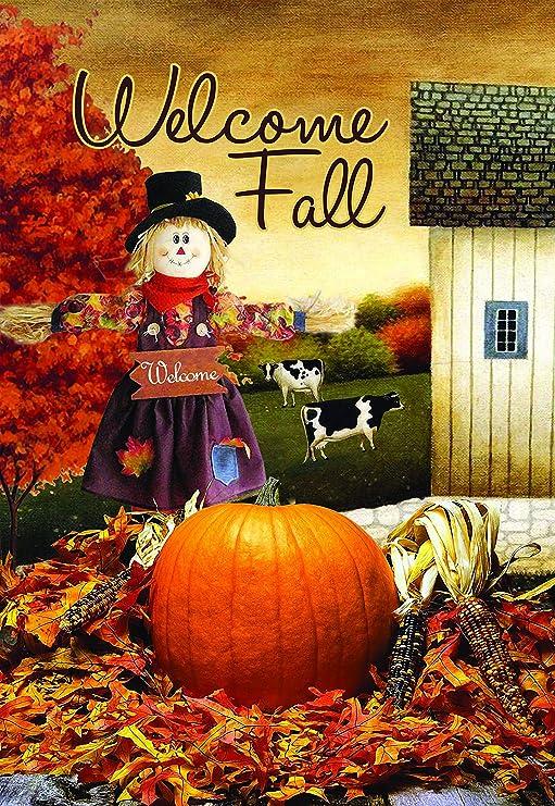 Lantern Hill Welcome Fall - Bandera de jardín con espantapájaros (doble cara, 31, 75 x 45, 72 cm), diseño rústico de granja: Amazon.es: Jardín