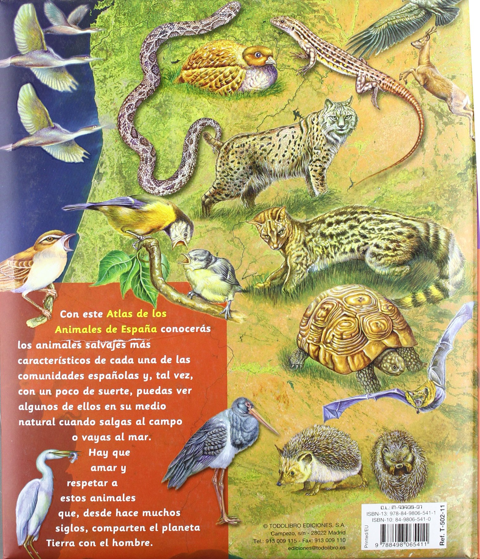 Atlas de animales de España (Cosas de niños): Amazon.es: Todolibro, Equipo, Todolibro, Equipo: Libros
