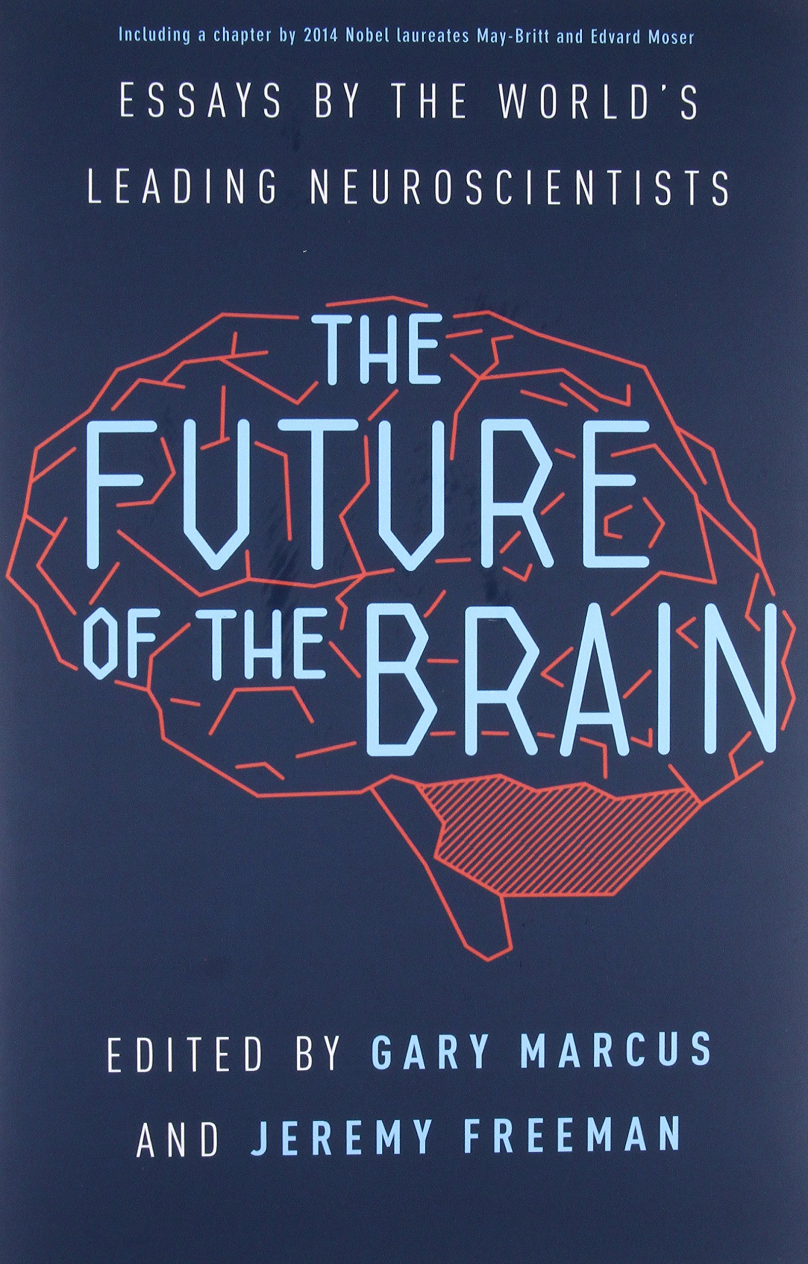 the future of the brain essays by the world s leading