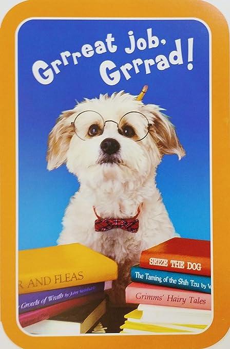 Amazon great job grad congrats happy graduation greeting great job grad congrats happy graduation greeting card w dog congratulations m4hsunfo