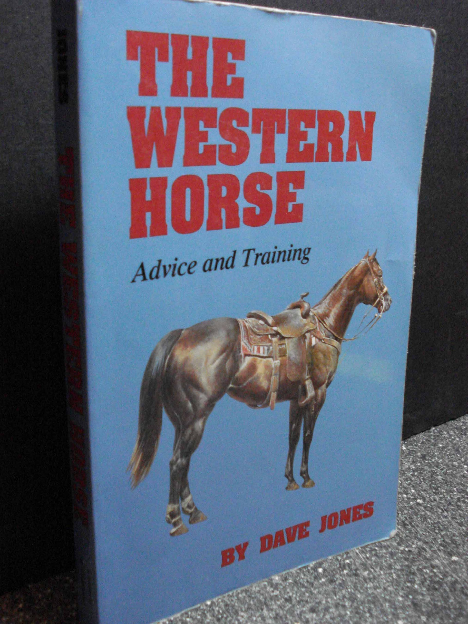 western-horse-advice-and-training