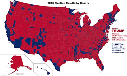 Amazon.com: Home Comforts Map - US Presidential Election ...