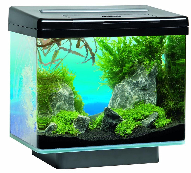 juwel vio 40 pl4 aquarium schwarz 15 w g nstig online kaufen. Black Bedroom Furniture Sets. Home Design Ideas