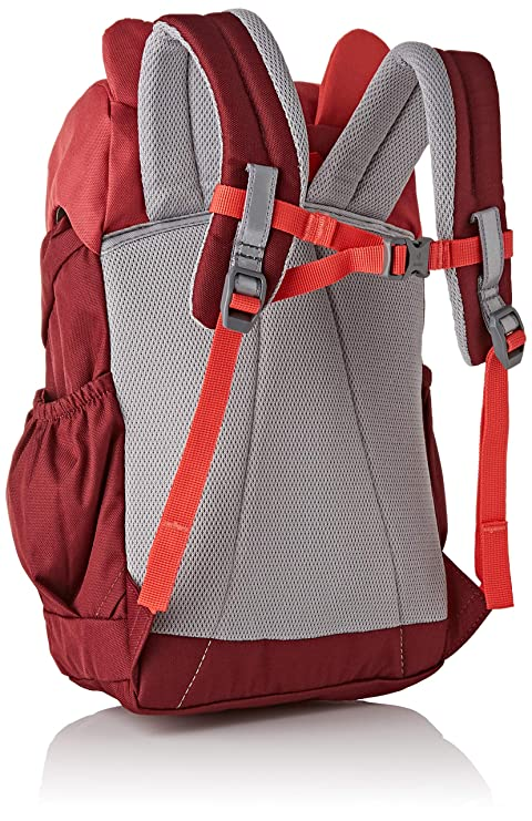 Amazon.com | Deuter Kikki Kids Backpack (Cardinal/Maroon) | Kids Backpacks