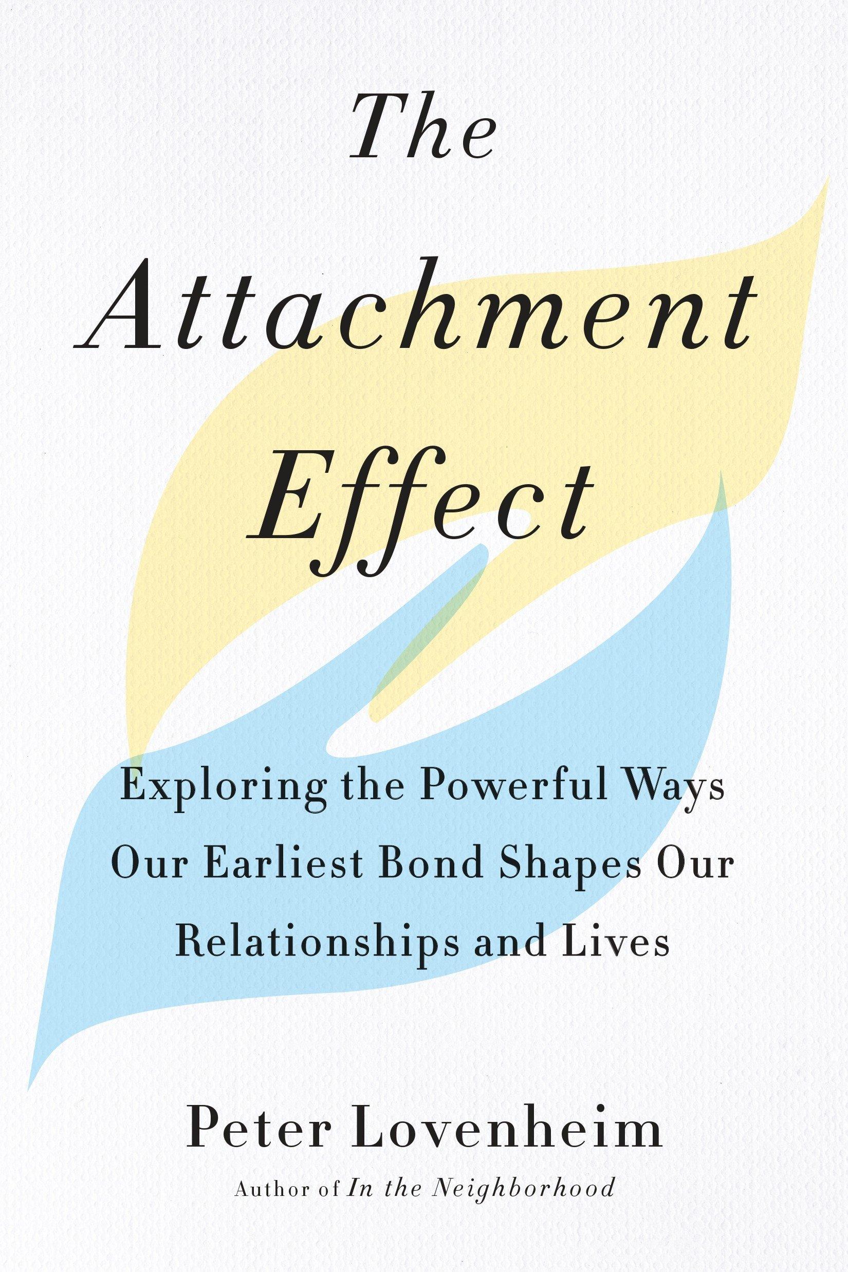 attachment type quiz