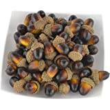 SAMYO Simulation Artificial Lifelike Fruit Nutty-brown Acorns for Fall Table Scatter Crafting, drawing ,Home House Kitchen and Autumn Decoration 60PCS set