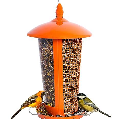 Mangiatoia Per Uccelli Selvatici Attrae Più Uccelli, Perfetta Per La  Decorazione Del Giardino, Grande