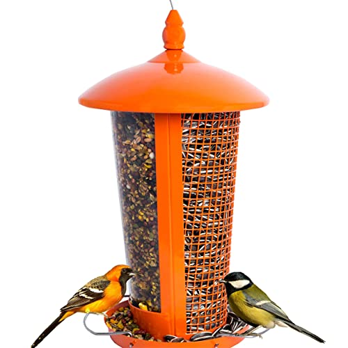 Wild Bird Feeder Attract More Birds Perfect for Garden Decoration, Great Bird Feeders for Small & Medium Birds, Easy to Clean and Fill Bird Feeder Hanger Included Great Gift & Fun Idea! (Orange)