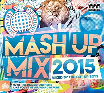 Ministry Of Sound: Mash Up Mix / Various