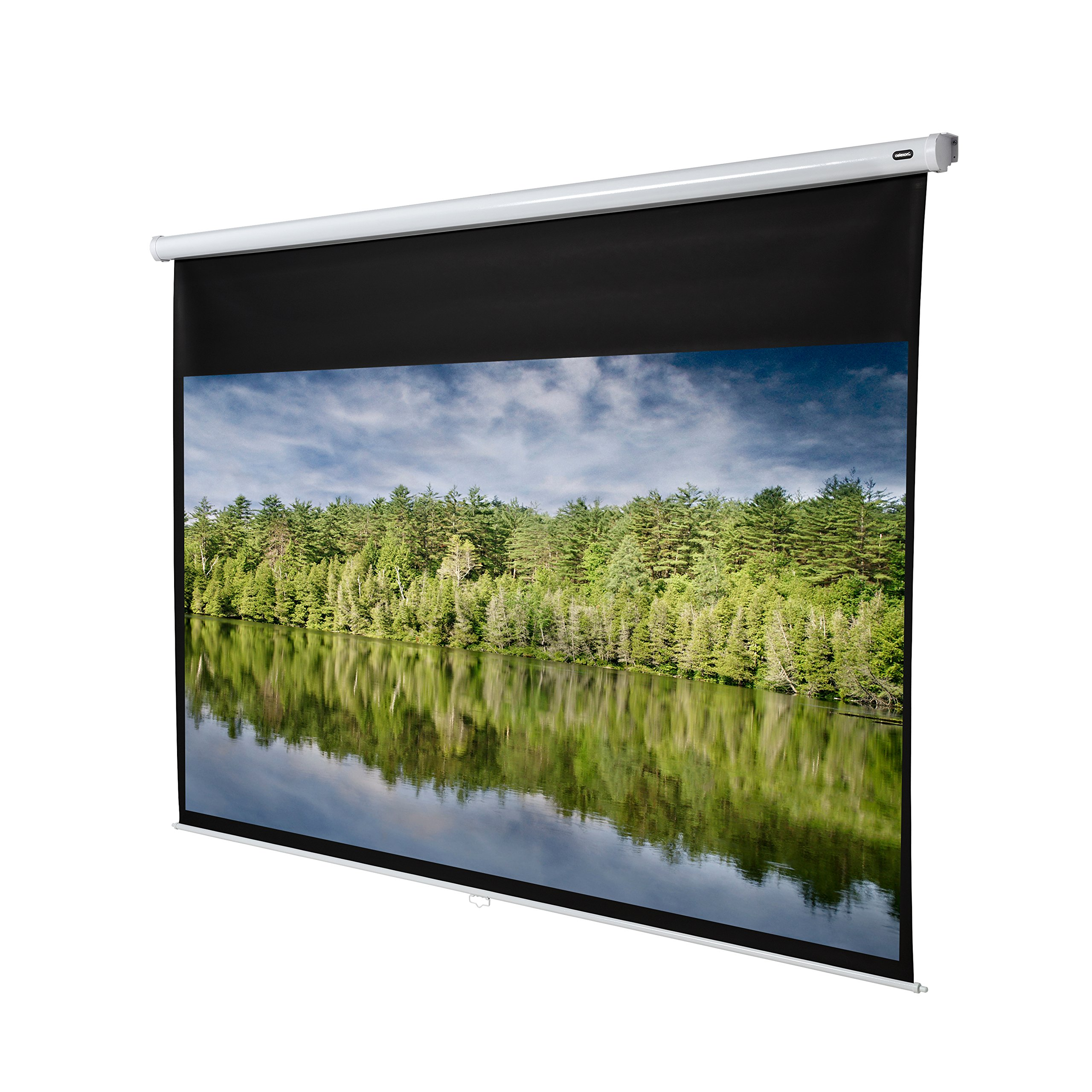 celexon 138'' Manual Economy 120 x 68 inches viewing area | 16:9 format | Manual Pull Down Projector Screen | Wall or ceiling mounting | Gain factor of 1.0 for home cinema & business environments