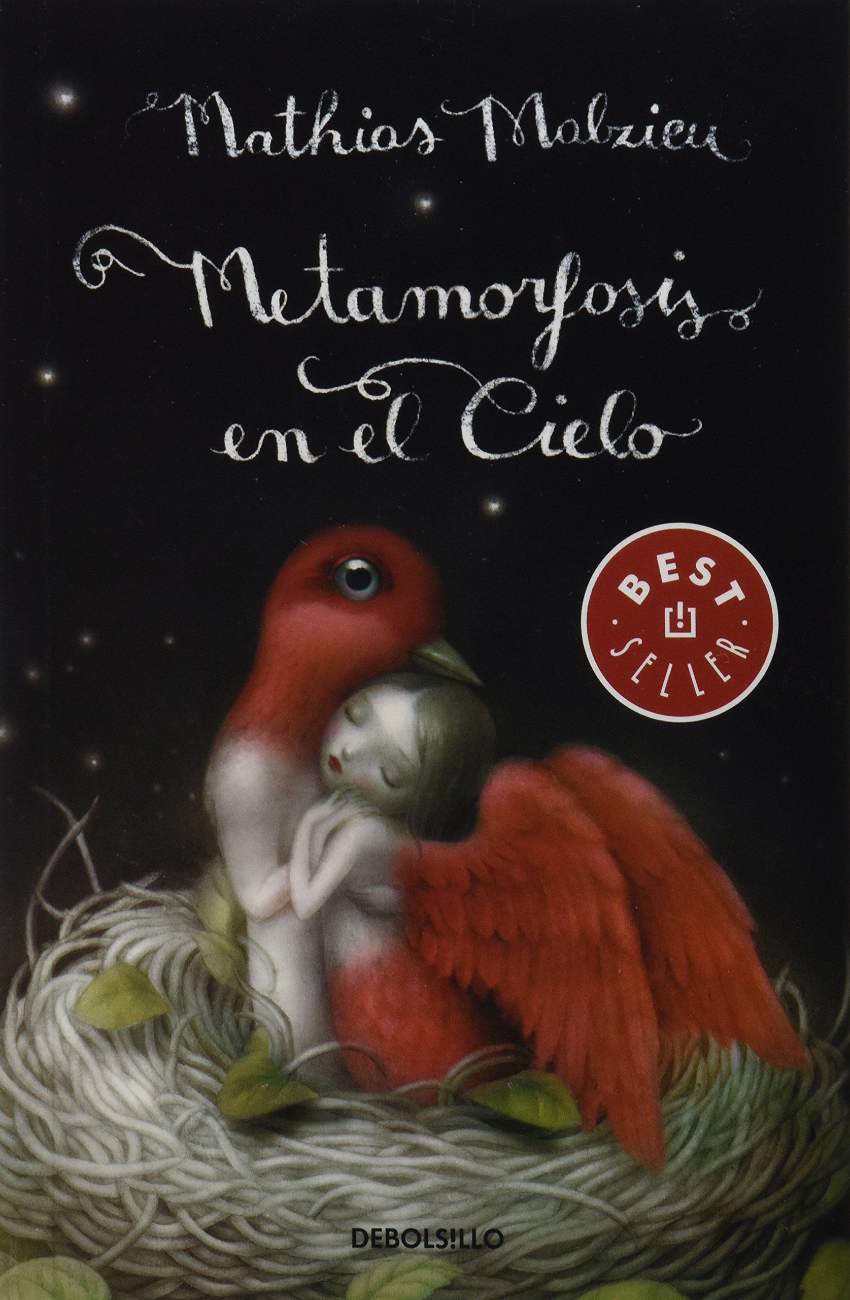 Amazon.com: Metamorfosis en el cielo (Spanish Edition) (9786073120333): Mathias Malzieu: Books