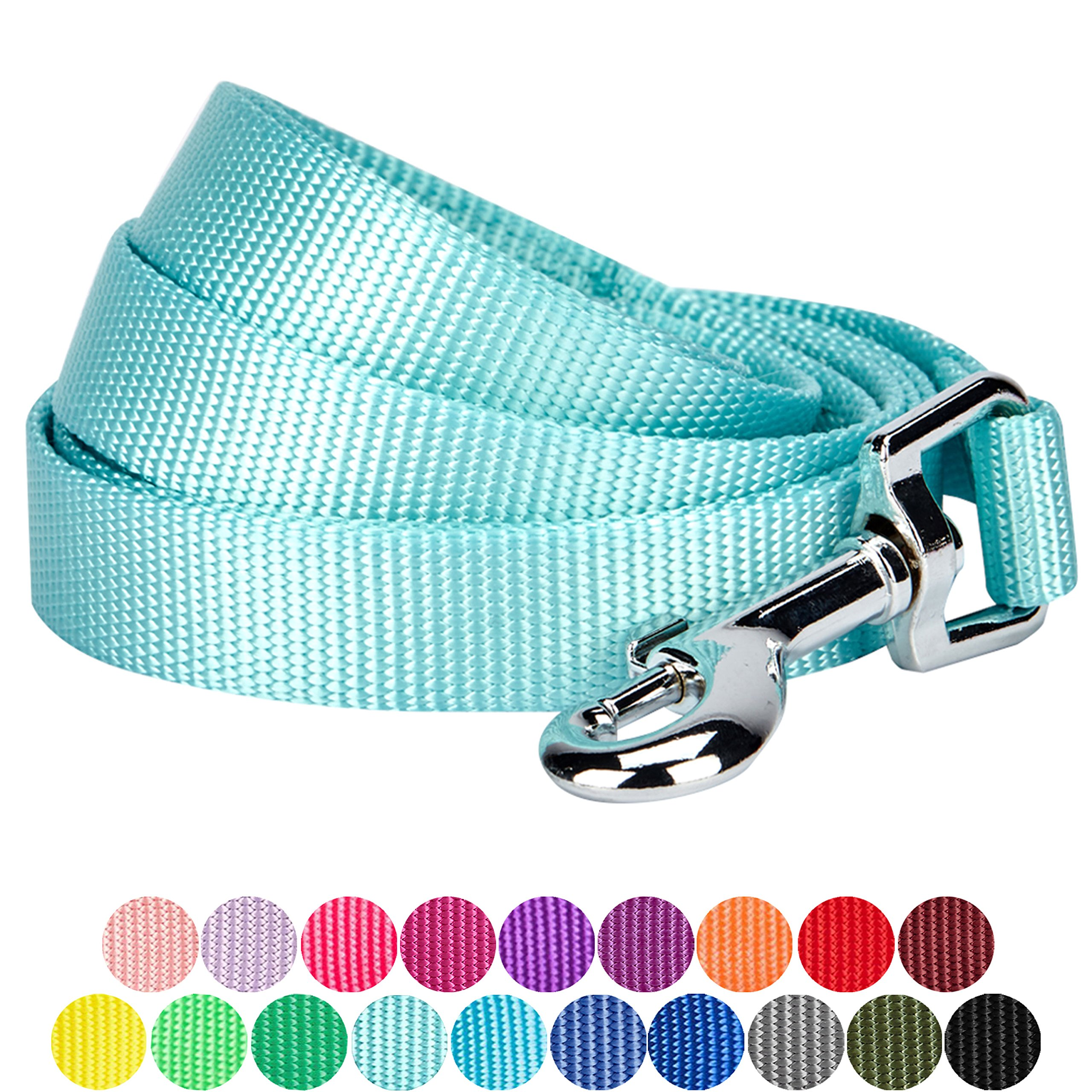 Blueberry Pet 19 Colors Durable Classic Dog Leash 5 ft x 5/8'', Mint Blue, Small, Basic Nylon Leashes for Dogs by Blueberry Pet (Image #1)
