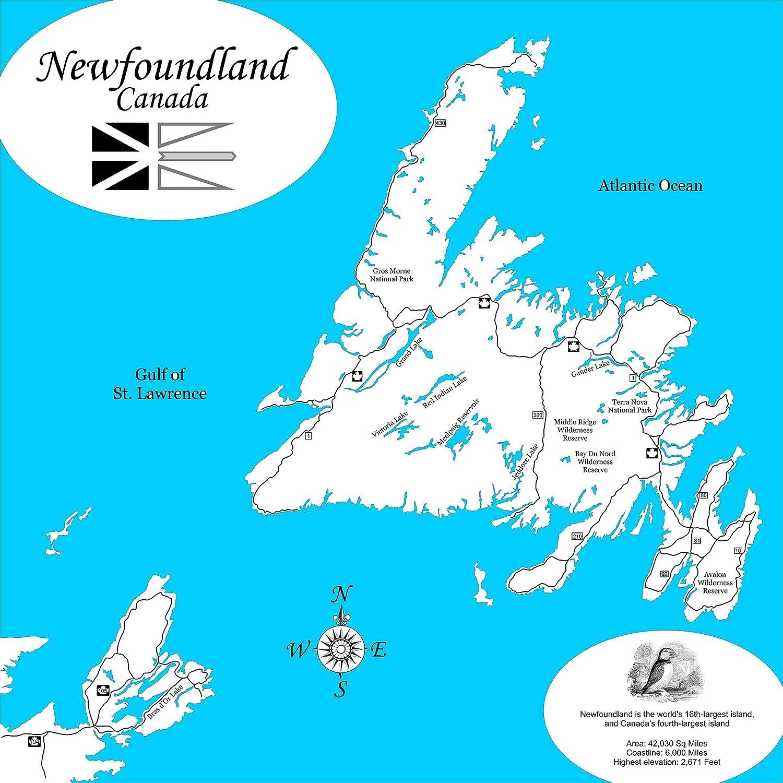 Gander Canada Map.Amazon Com Newfoundland Canada Framed Wood Map Wall Hanging Handmade