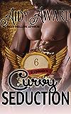Curvy Seduction: Explosion: A Curvy Love Serial - Part Six