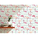 CostaCover Chic removable wallpaper with colorful Flamingo on light blue striped Background CC039 (24'' x 120'')