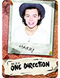Make Up by One Direction The Complete Palette Collection Makeup, Harry, 16 Count