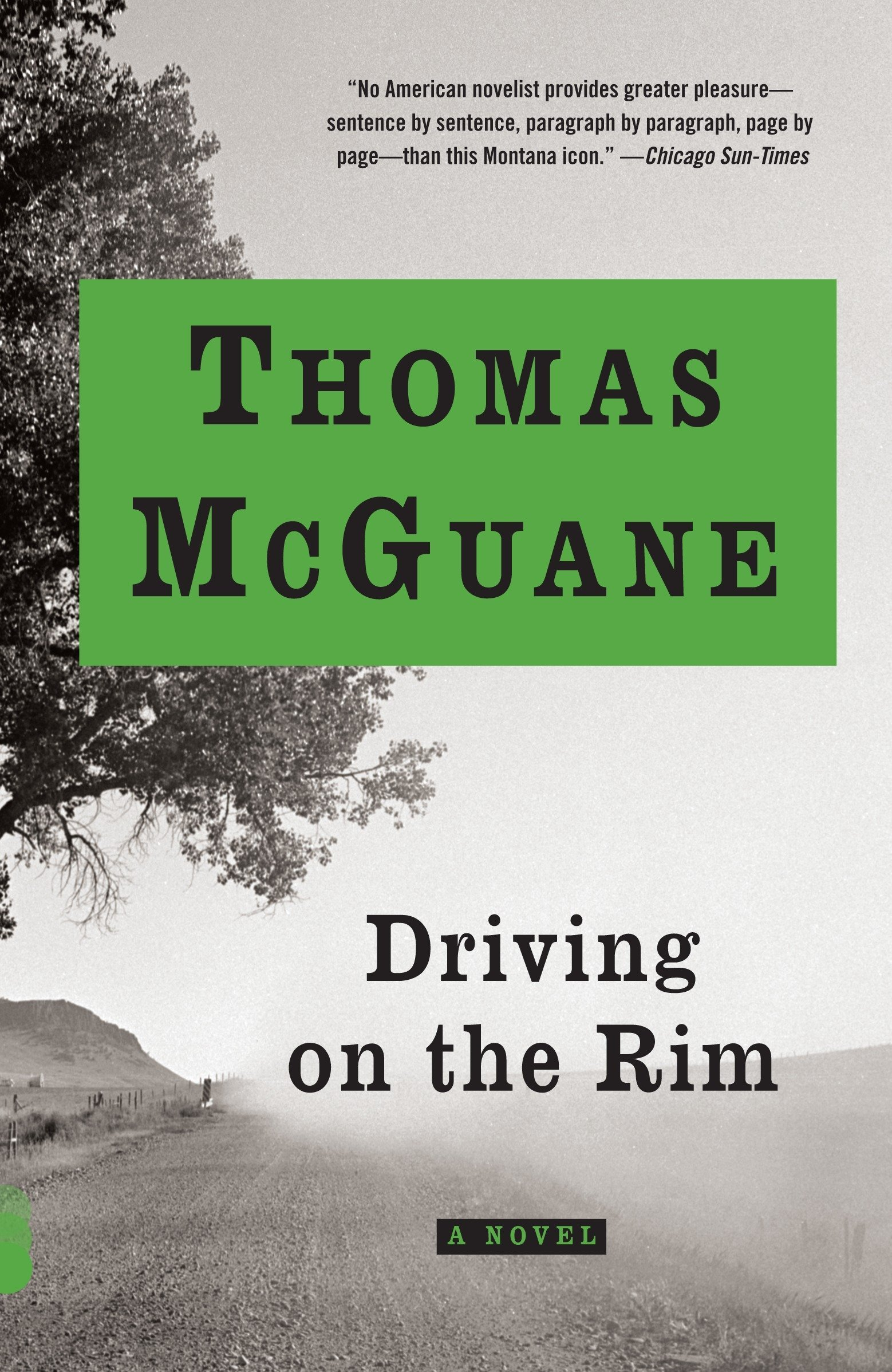 Read Online Driving on the Rim (Vintage Contemporaries) ebook