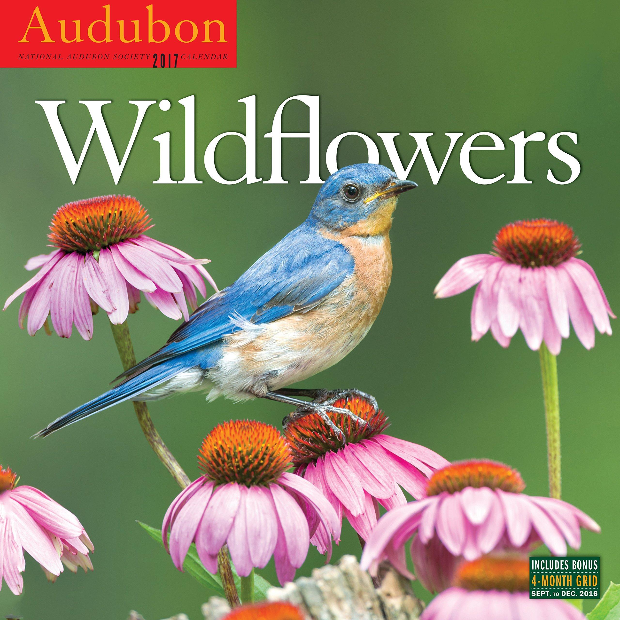 Audubon Wildflowers Wall Calendar 2017 product image