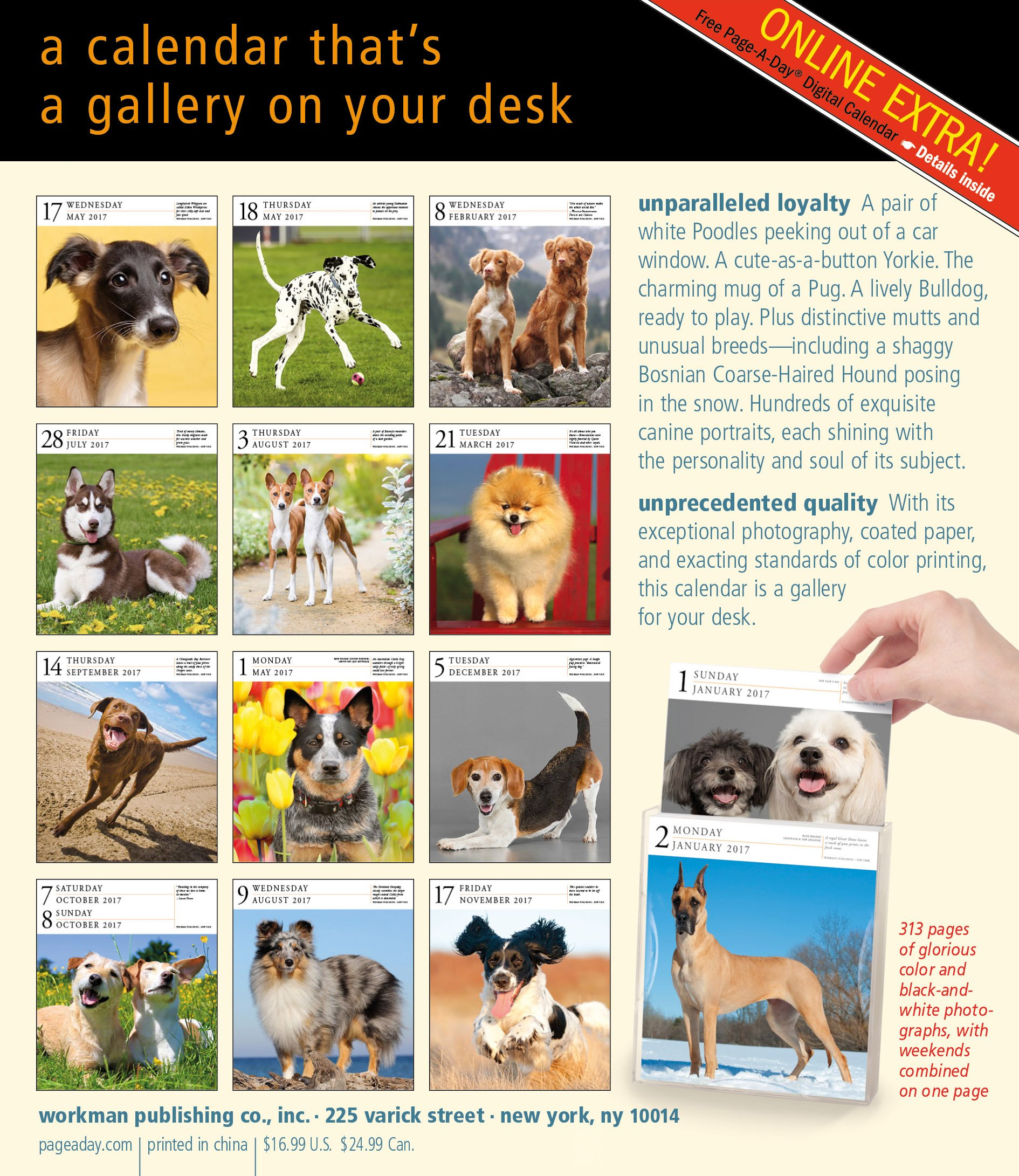 dog page a day gallery calendar 2017 workman publishing