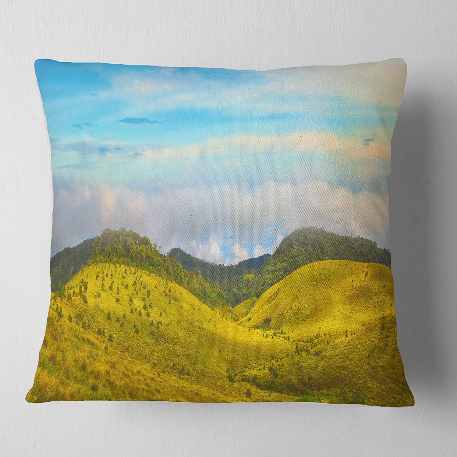 Designart CU11313-26-26 The Horton Plains Green Panorama' Landscape Printed Cushion Cover for Living Room, Sofa Throw Pillow 26 in. x 26 in. in